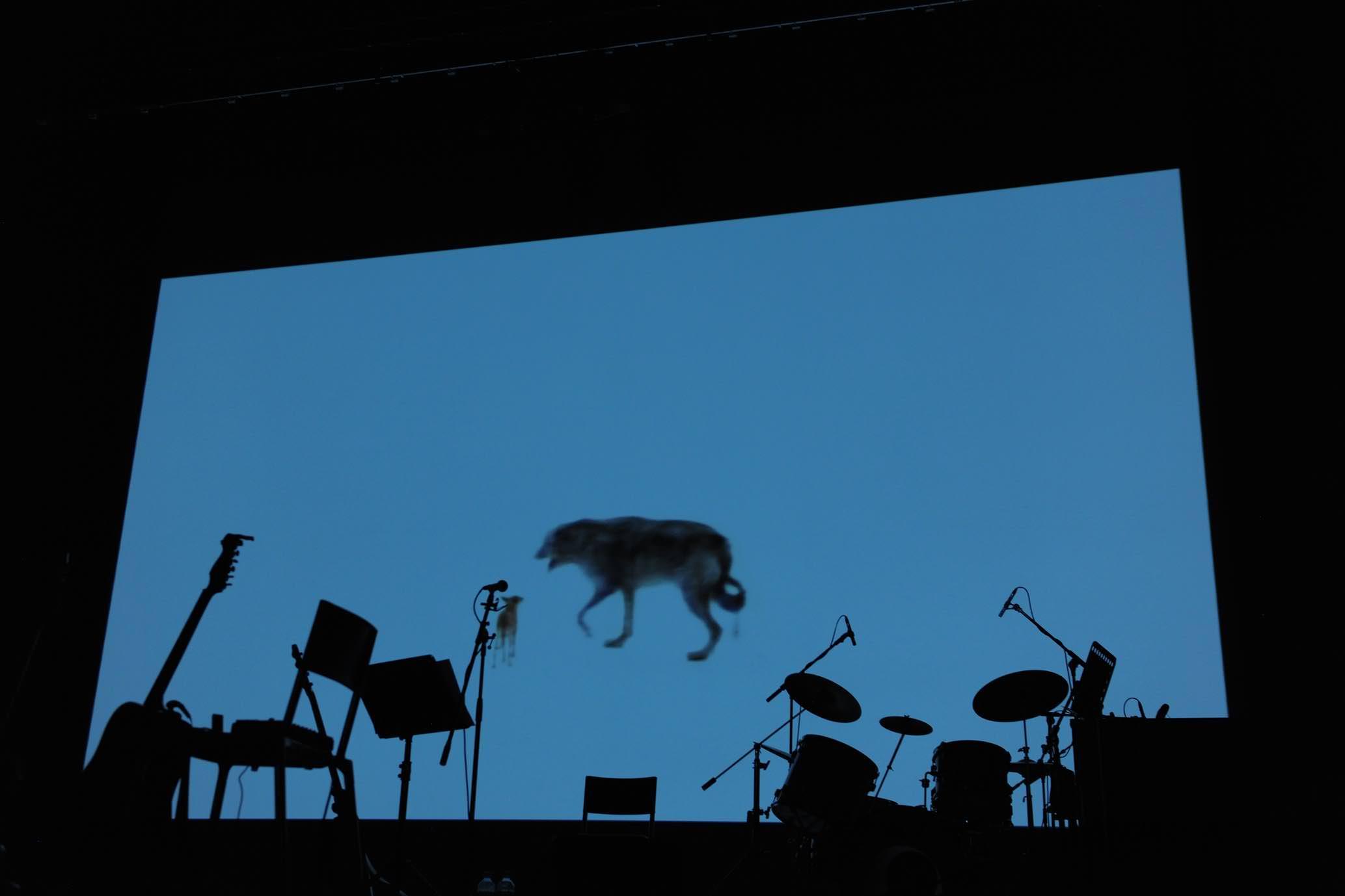 Venise les artistes font leur show en musique num ro - Architecte japonais tadao ando lartiste autodidacte ...