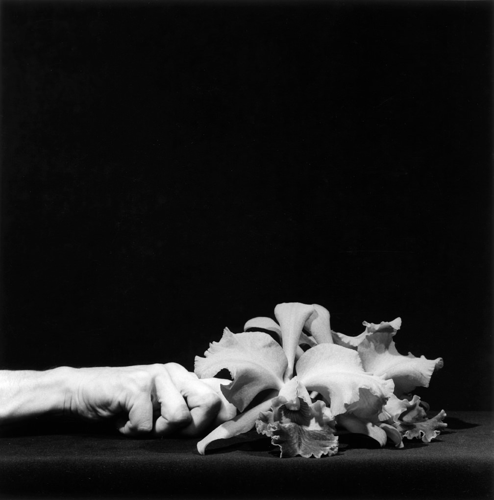 Robert Mapplethorpe Orchid and Hand, 1983 50.8 x 40.6 cm (20 x 16 in), Silver gelatin print