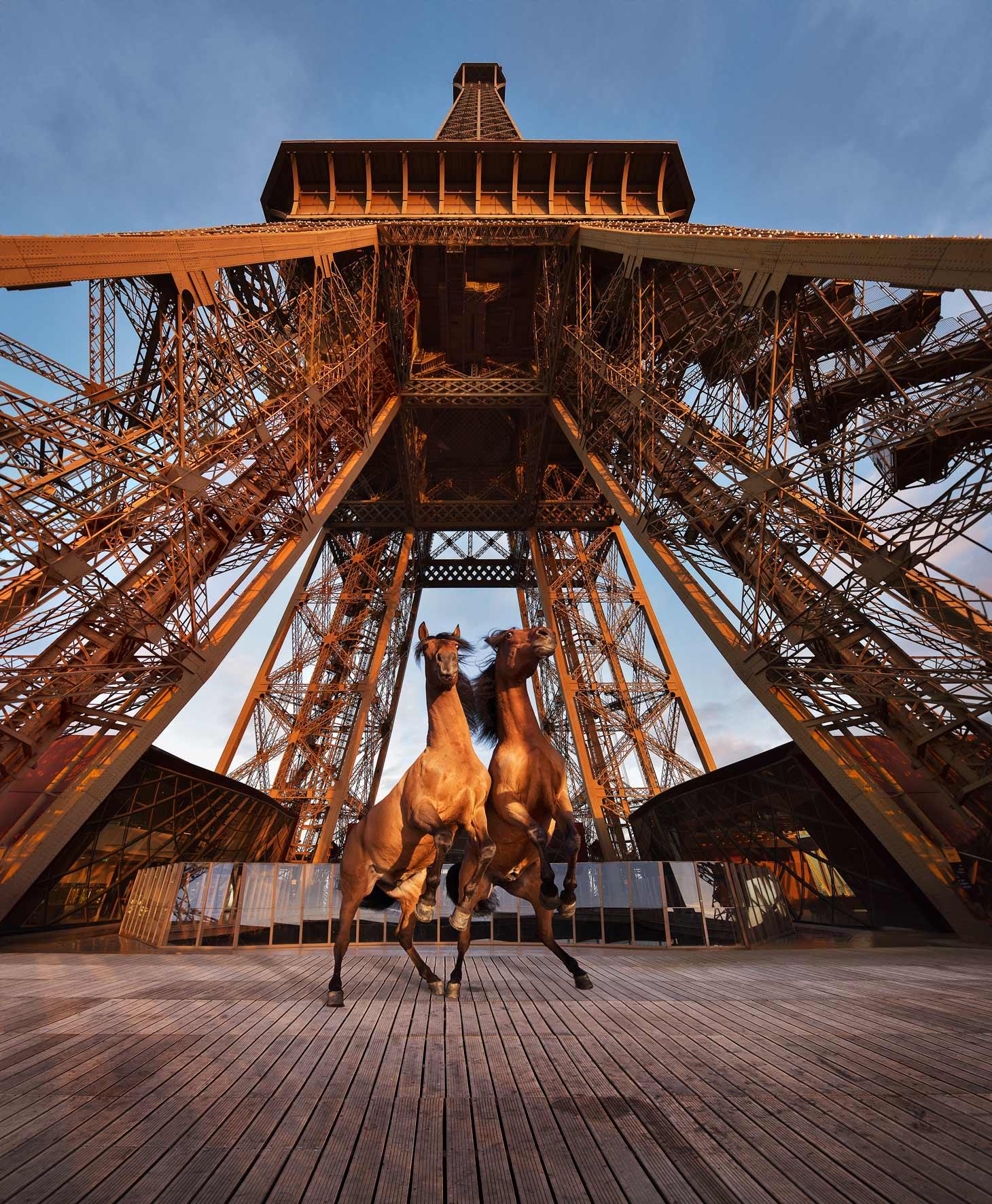 La tour Eiffel prise d'assaut par les chevaux de Paola Pivi