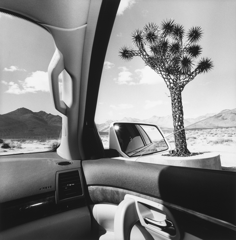 Lee Friedlander, California, 2008 Série America by Car Tirage gélatino-argentique, 37,5 × 37,5 cm Courtesy Fraenkel Gallery, San Francisco © Lee Friedlander, courtesy Fraenkel Gallery, San Francisco