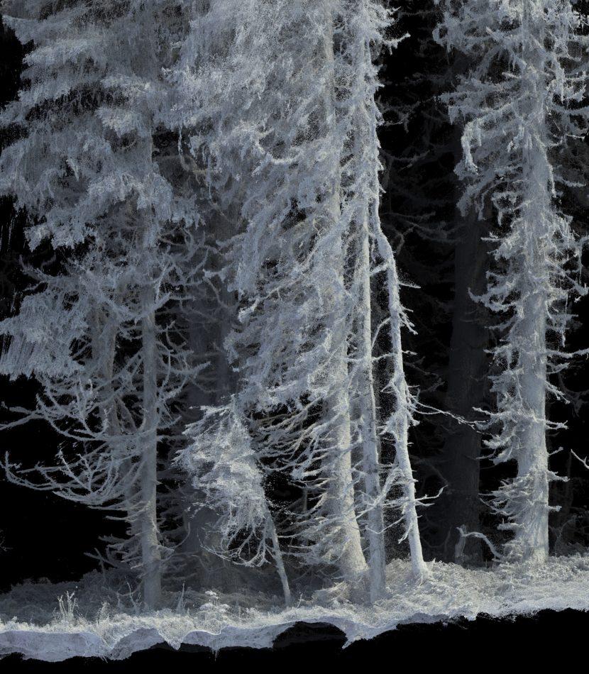 """""""Remains: Vallée de Joux"""", Quayola, Courtesy of Audemars Piguet"""