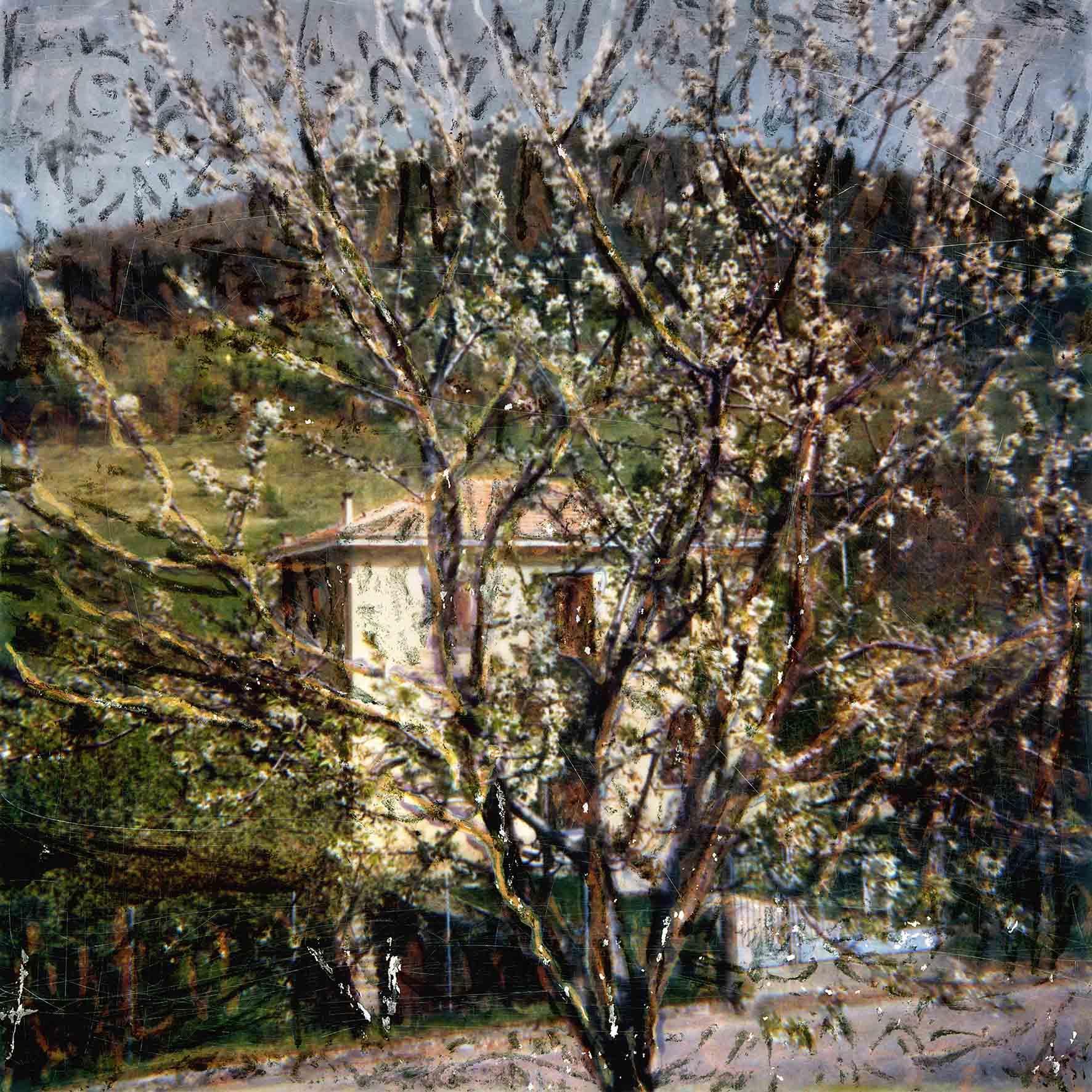 """Nino Migliori, série """"Il luoghi di Morandi"""" (1985) © Fondazione Nino Migliori, Bologna, Italie"""