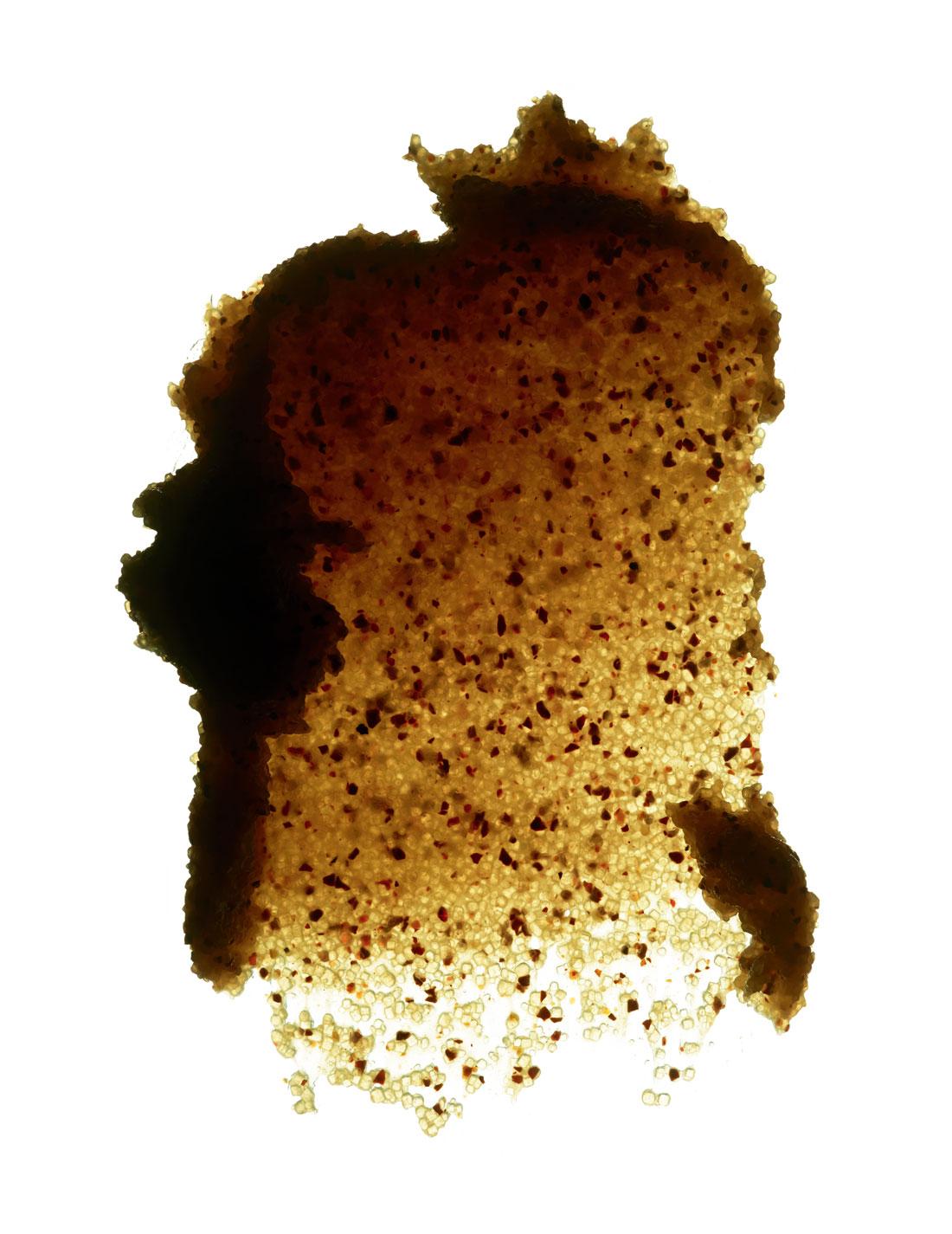 """Pépins broyés et huile de raisin, sucre brun, miel d'acacia et huiles essentielles de genièvre, de cyprès, de citron, de lemongrass, de romarin et de géranium. """"Gommage Crushed Cabernet"""", CAUDALIE."""