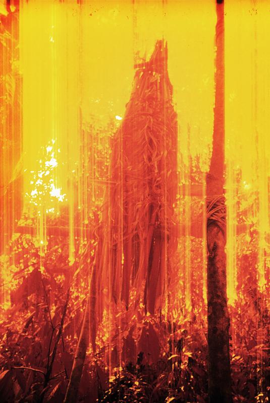 Enveloppe funéraire dans la forêt, pellicule infrarouge, Catrimani, Roraima, 1976.