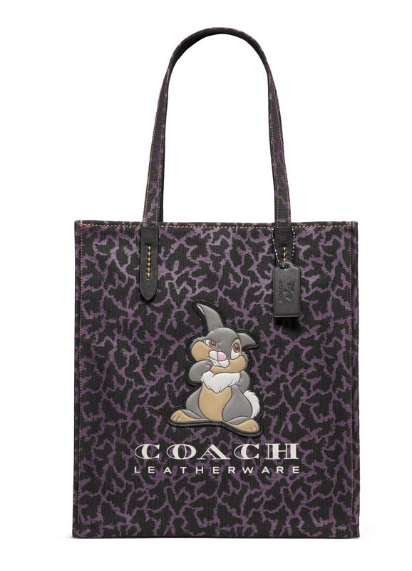 Coach x Disney