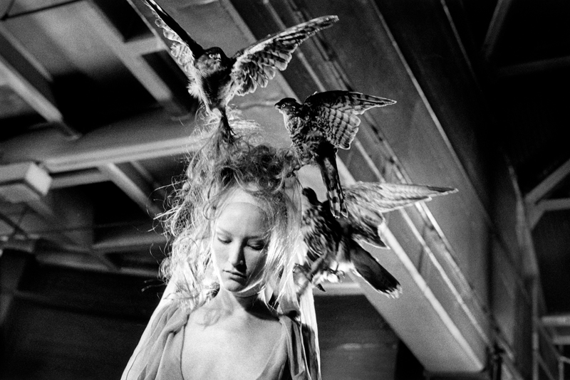 """Ann Ray, """"Les Oiseaux"""", 2000. Image courtesy of Ann Ray and Barrett Barrera Projects"""