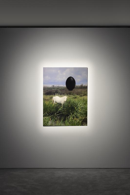 Vue de l'exposition de Rachel Rose à Lafayette Anticipations, mars 2020 © Andrea Rossetti / Lafayette Anticipations, Paris