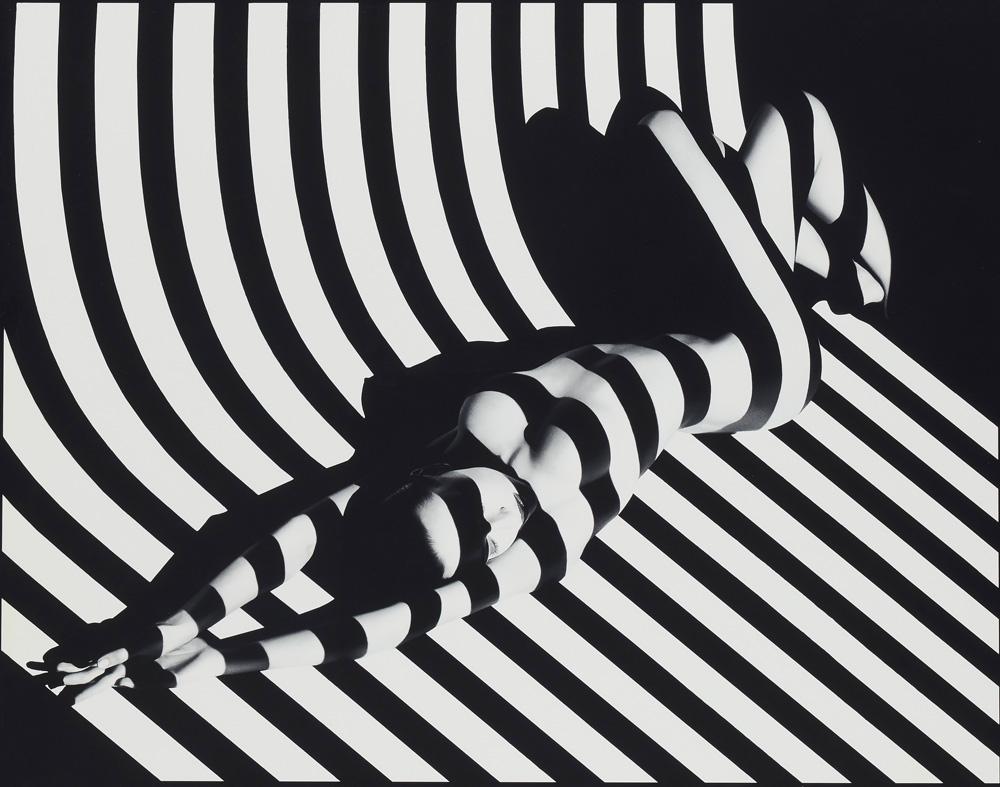 """Zebra 17, Studio de Paris, Juin 1988"" de Francis Giacobetti, credit photo Francis Giacobetti"