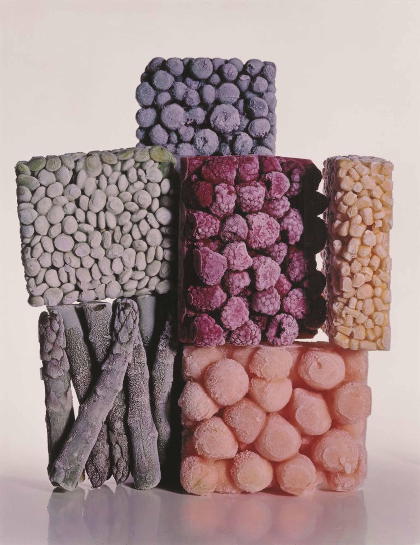 Irving Penn_Frozen Foods