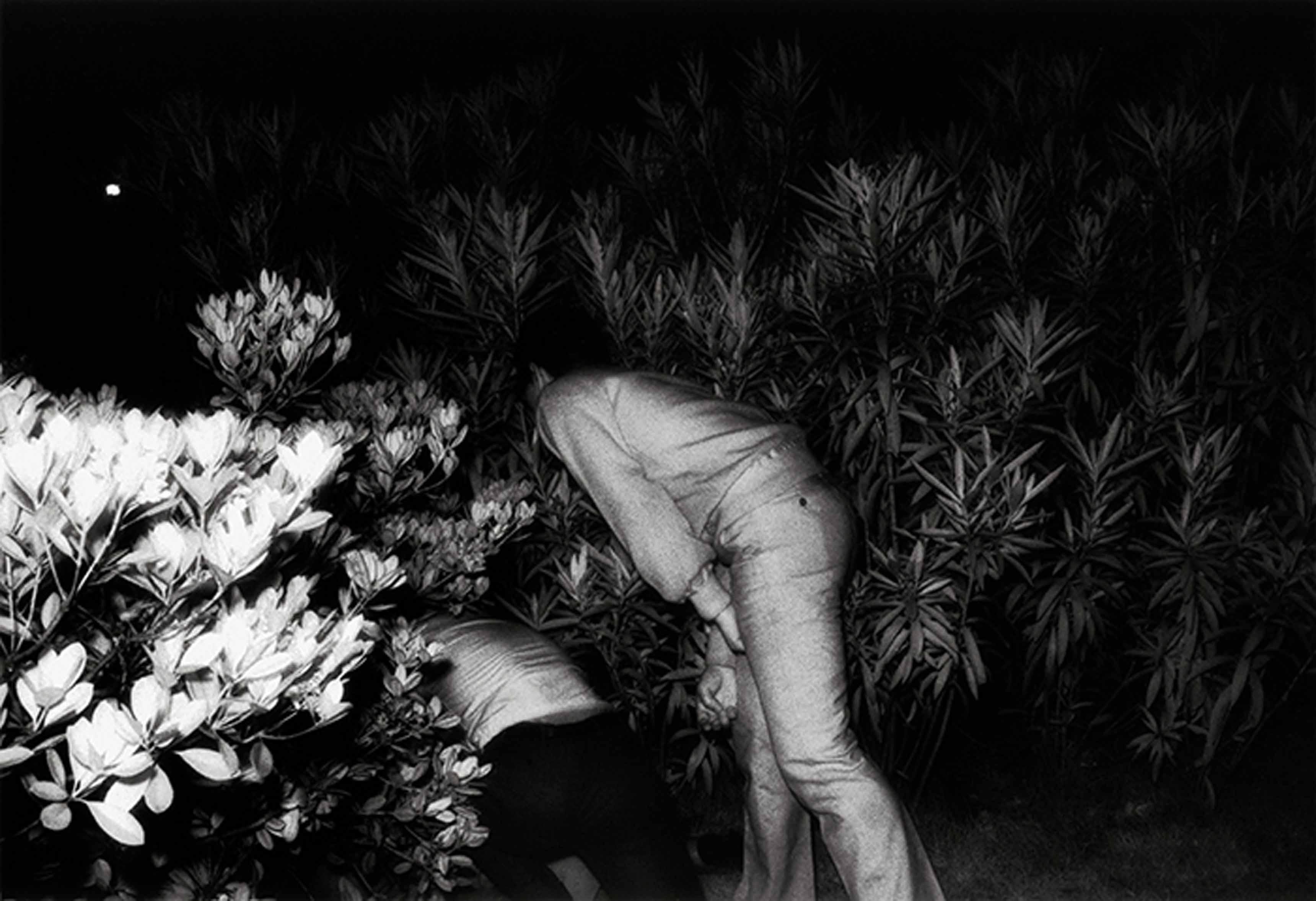 """Kohei Yoshiyuki (1946). Sans titre, séri """"The Park"""". Japon, 1971. Tirage argentique. 22,2 x 32,2 cm. Kohei Yoshiyuki, couresy Yossi Milo Gallery, New YorK."""