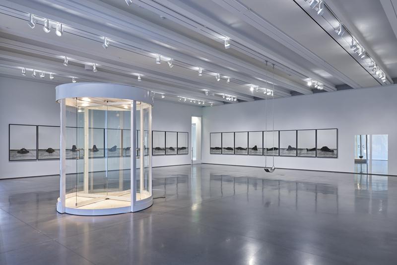 Vue d'installation, Oscar Tuazon, Lost Without Your Rhythm, 2018. Aspen Art Museum. Photo: Tony Prikryl.