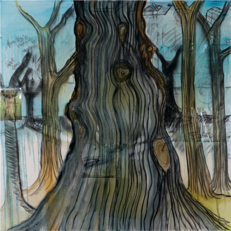 Fabrice Hyber (né en 1961). Bois, 2008-09. Technique mixte, collages punaisés et résine sur toile. Signée, datée et titrée au dos. 200 × 200 cm