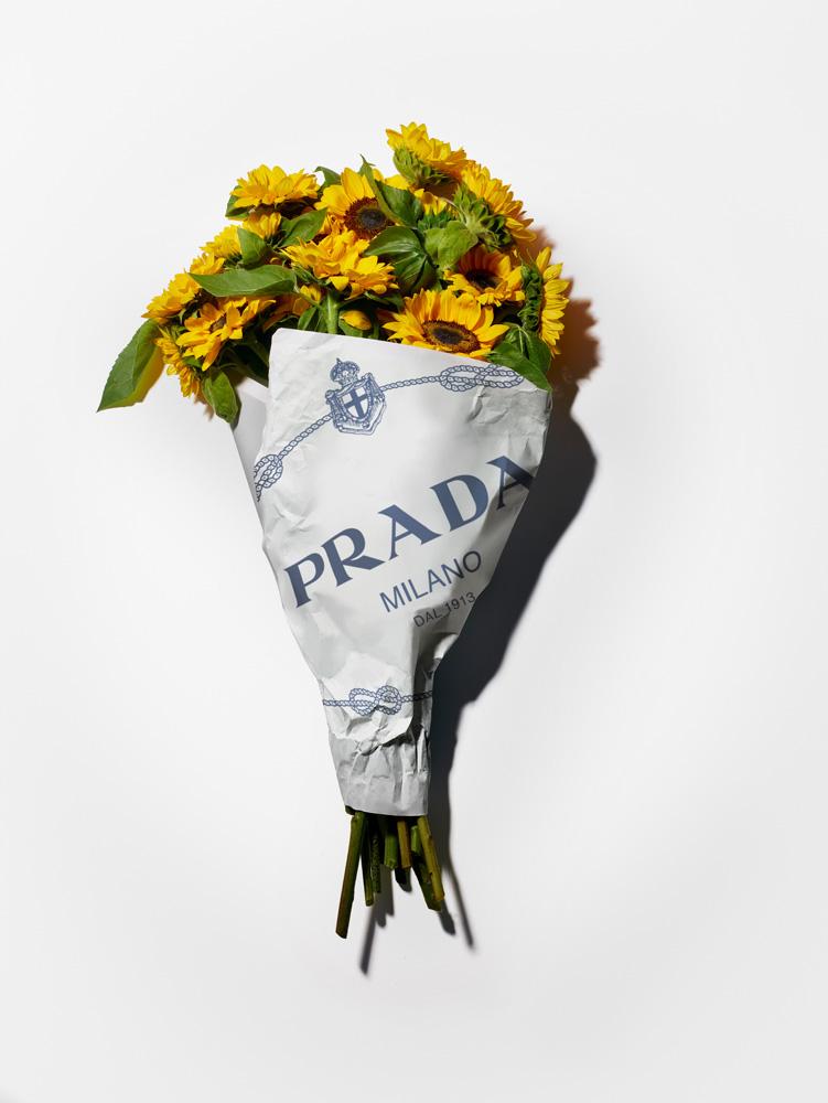 Campagne Prada pre-fall 2019