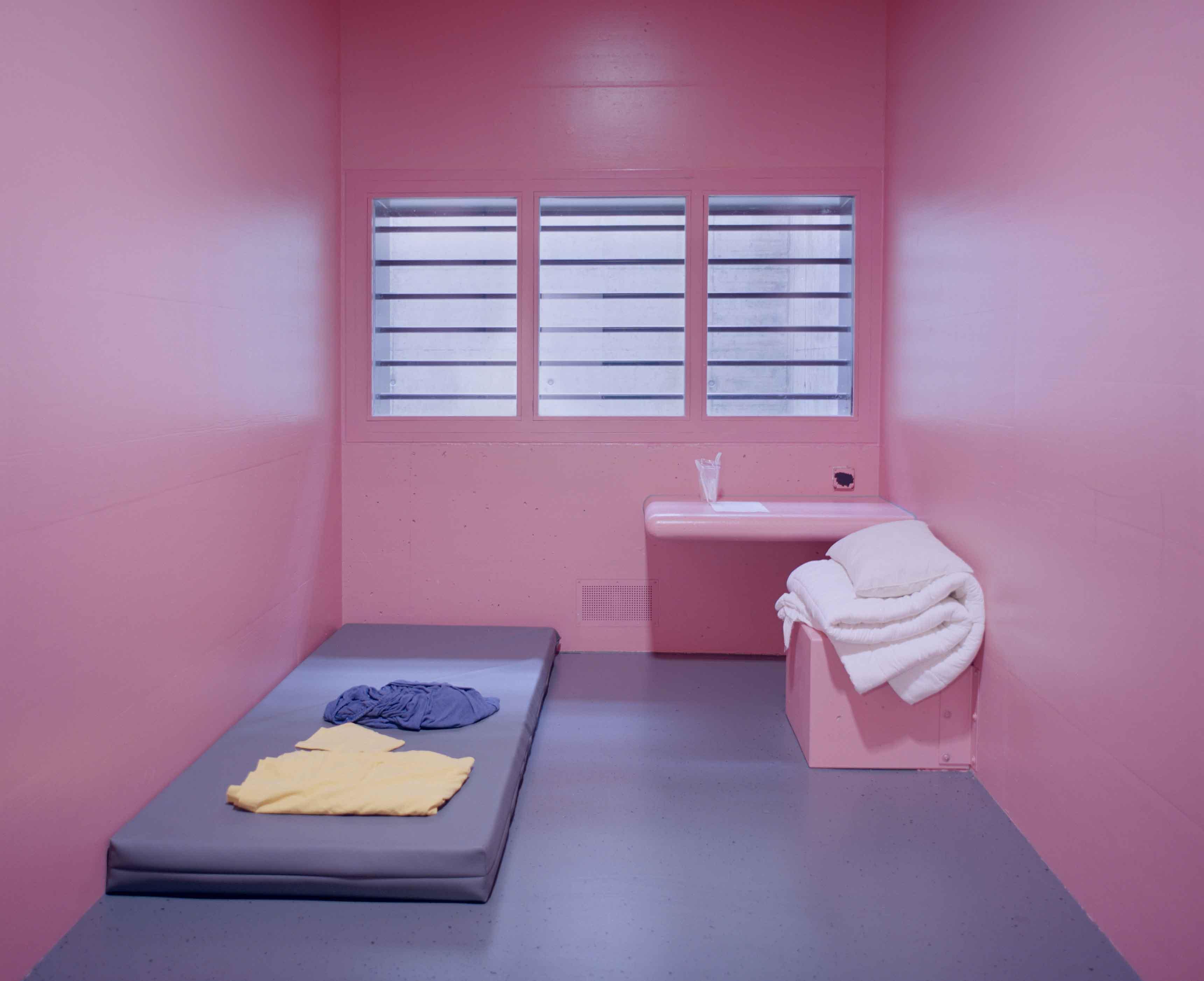 Pink Cells © Angélique Stehli