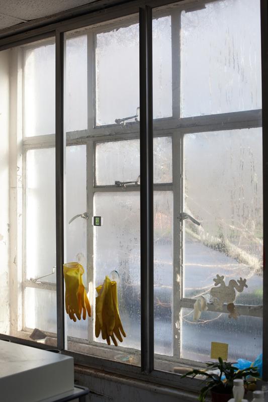Wolfgang Tillmans, Wet Room, Gloves, 2010, © the artist, courtesy Galerie Buchholz, Berlin/Cologne, Maureen Paley, London, David Zwirner, New York, Galerie Chantal Crousel, Paris