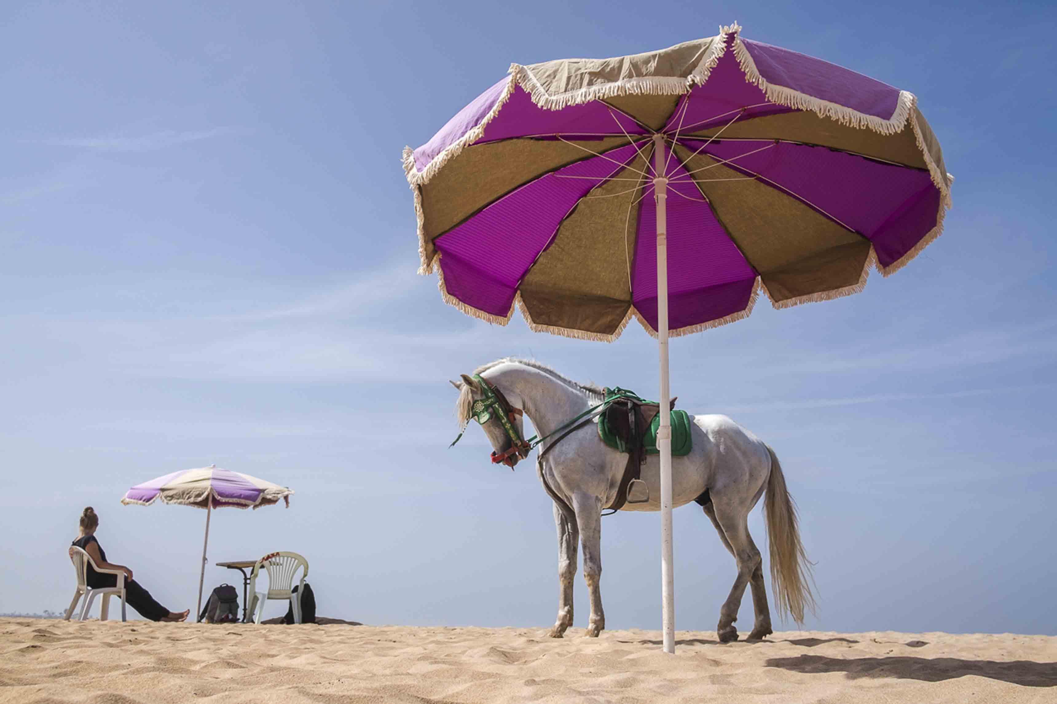 """Yassine Alaoui Ismaili, """"Casablanca Not the Movie"""", 2014–2018"""