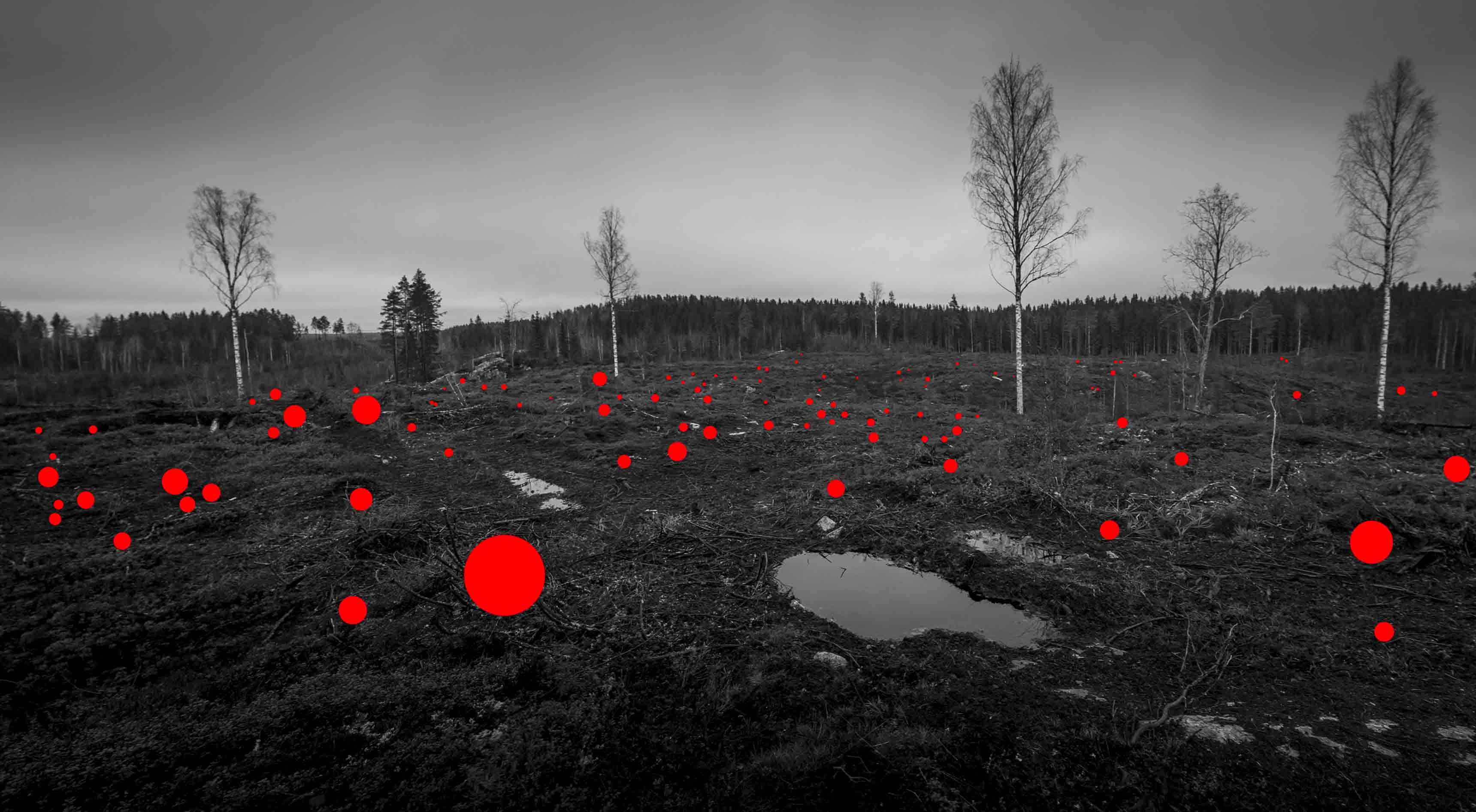 """100 Mistakes Made by Previous Generation"", 100 hectares, Jaakko Kahilaniemi, 2017."
