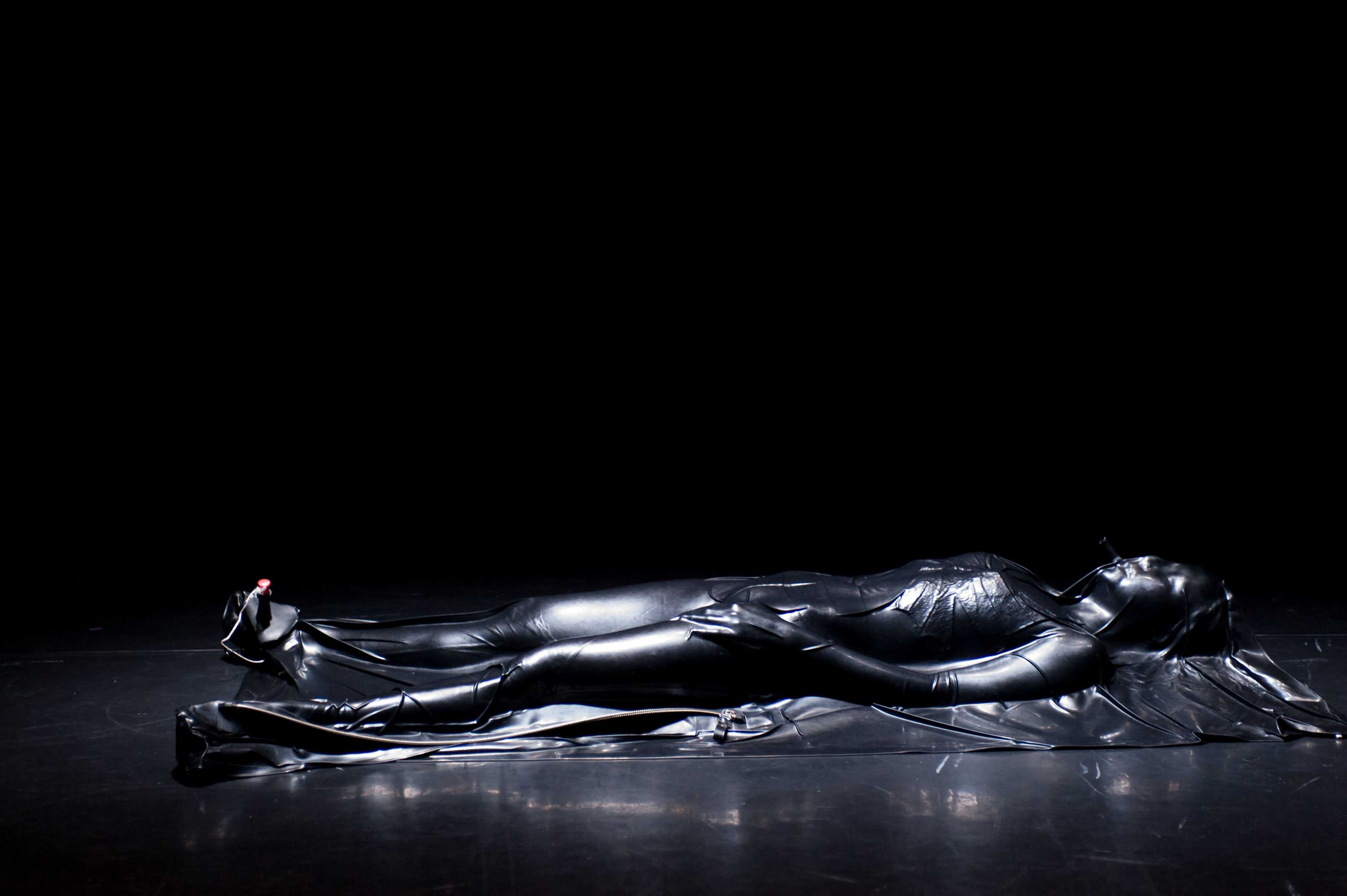 """Vue de la performance """"Sylphides"""" (2009) de Cecilia Bengolea et François Chaignaud. Credits photo Alain-Monot."""