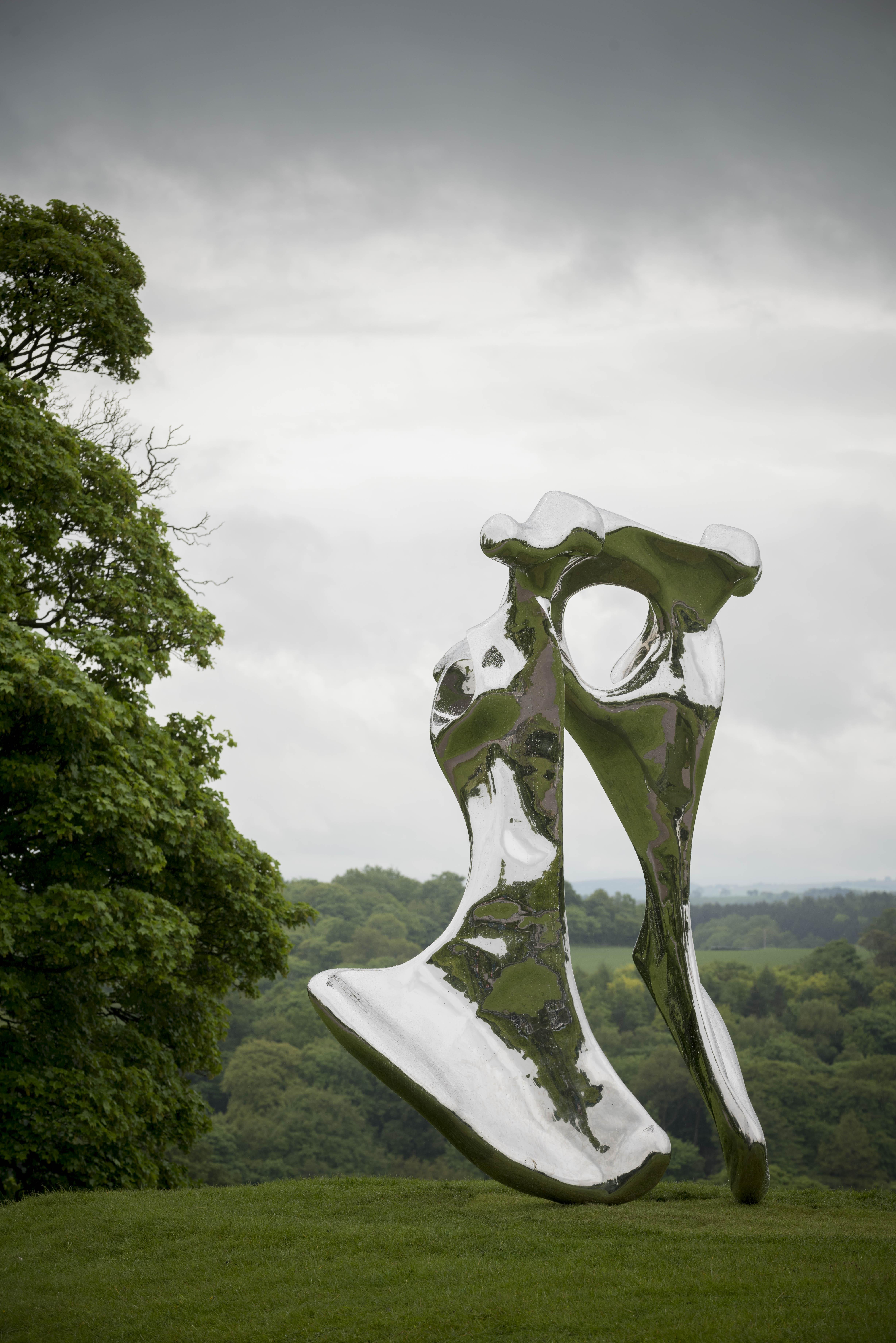 """Pelvis"" (2008) de Not Vital, acier chromé, 386 x 341 x 146 cm. Photo : Jonty Wilde."