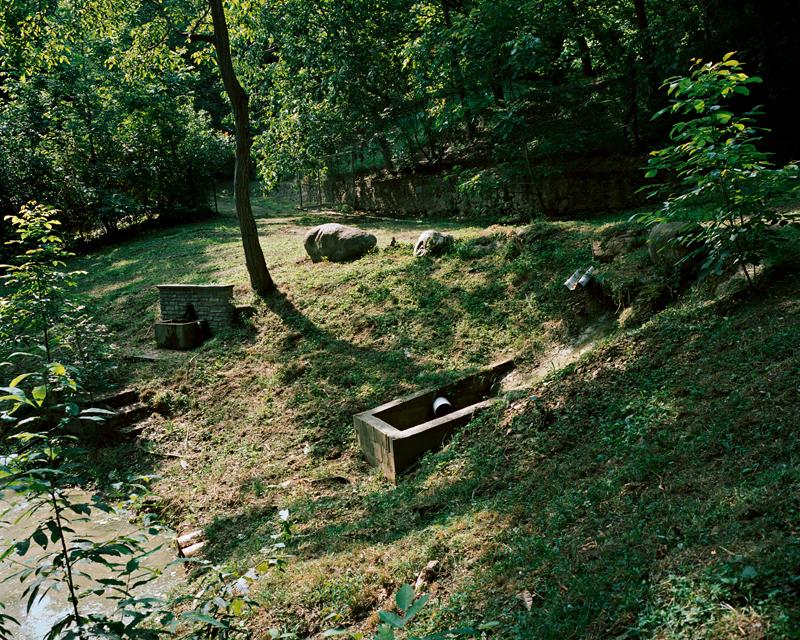 En contrebas de sa villa, une source forme un plan d'eau infesté de moustiques.