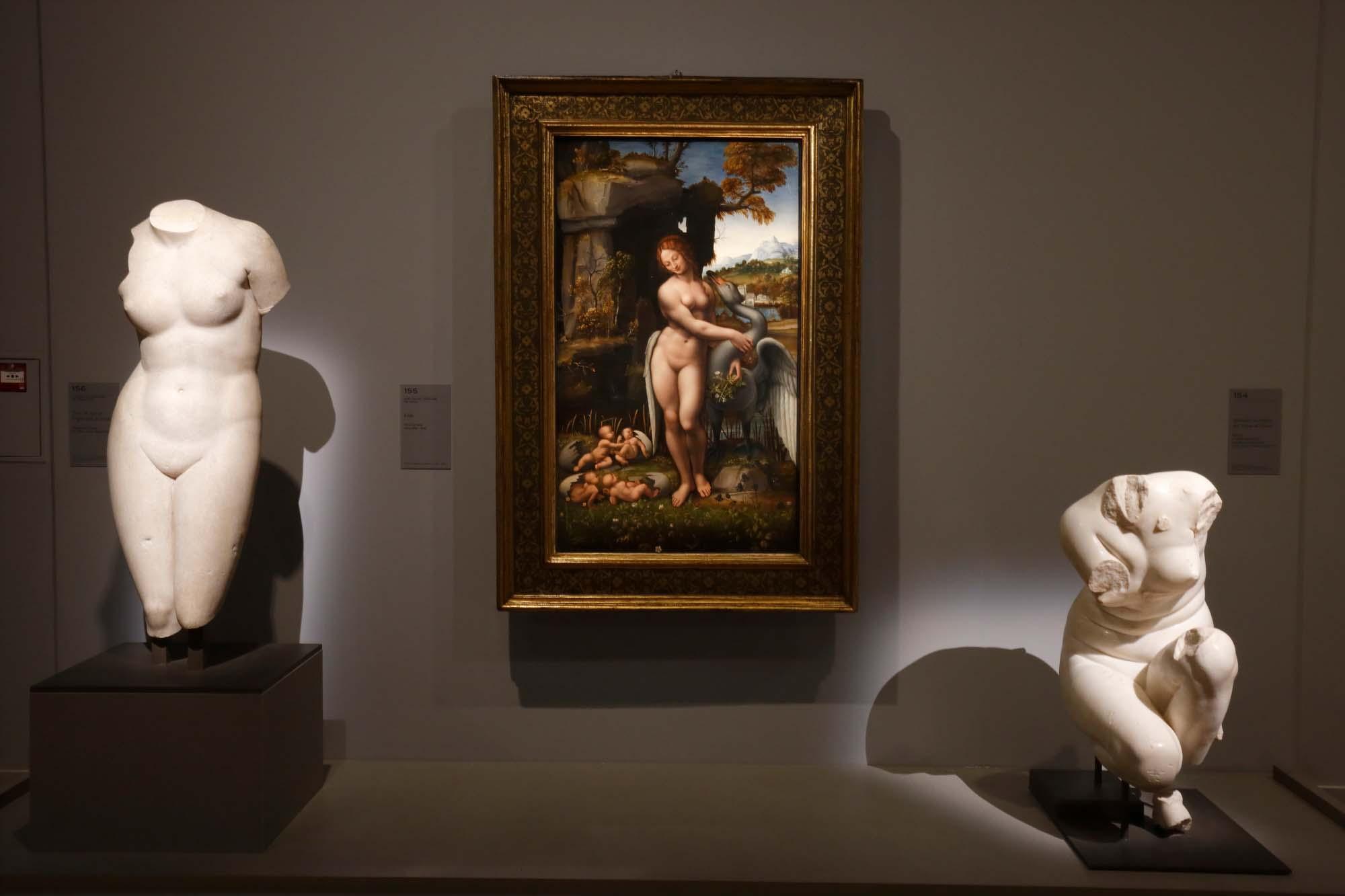 """Vue de l'exposition """"Leonard de Vinci"""" au musée du Louvre © Musée du Louvre – Antoine Mongodin"""