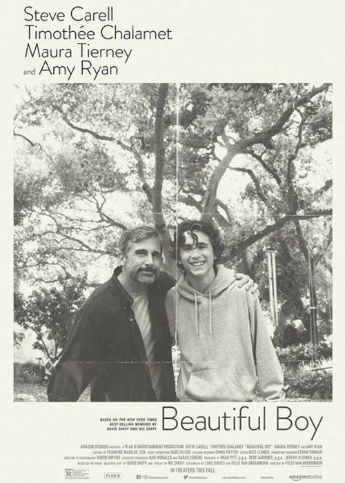 "L'affiche du film de Felix Van Groeningen ""Beautiful Boy""."