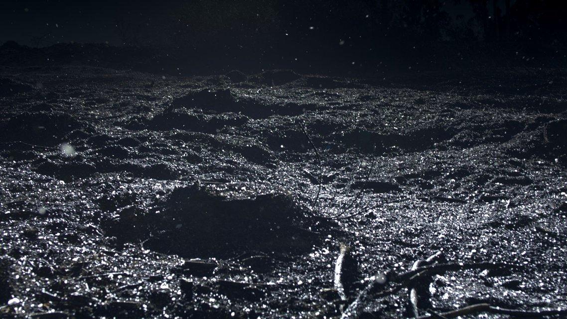 """""""C.H.Z., Continuously Habitable Zones"""" (""""Zones continuellement habitables"""") de Philippe Parreno, 2011  Vidéo HD, couleur, sonore, 12'49'' Riehen, Fondation Beyeler © Philippe Parreno Courtesy Philippe Parreno et Esther Schipper, Berlin"""