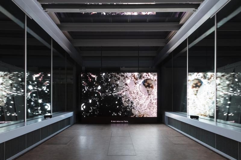 """Rachel Rose, """"Everything and More"""" (2015). Vue de l'exposition de Rachel Rose à Lafayette Anticipations, mars 2020 © Andrea Rossetti / Lafayette Anticipations, Paris"""