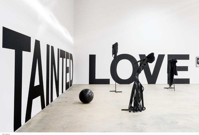 Émilie Pitoiset, Tainted Love, vue de l'exposition au Confort Moderne, 2017, courtesy de l'artiste et Klemm's gallery, Berlin.