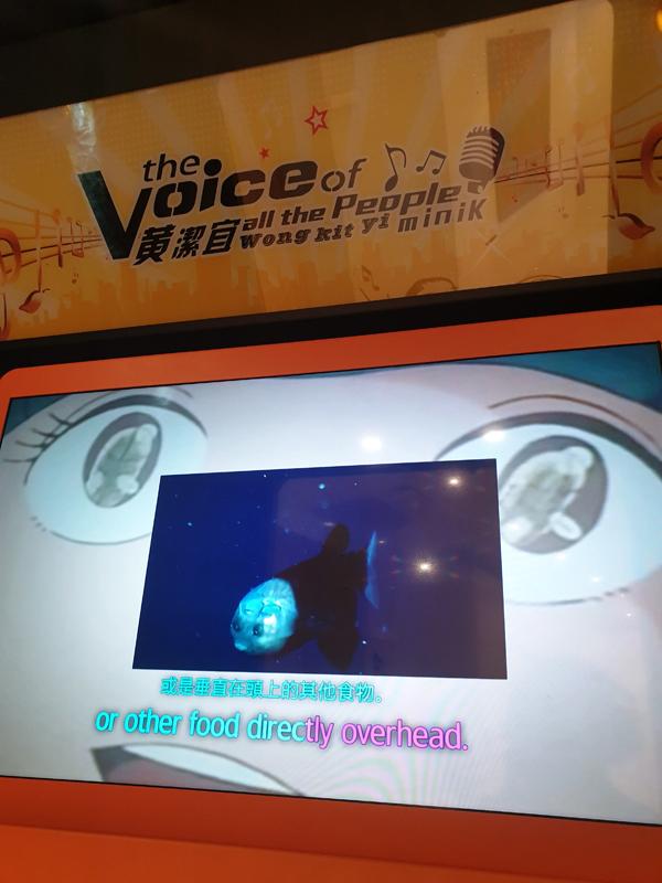 L'artiste hong-kongaise Wong Kit Wi propose un karaoké booth au format d'une cabine téléphonique où le visiteur peut faire l'expérience de sa dernière vidéo.