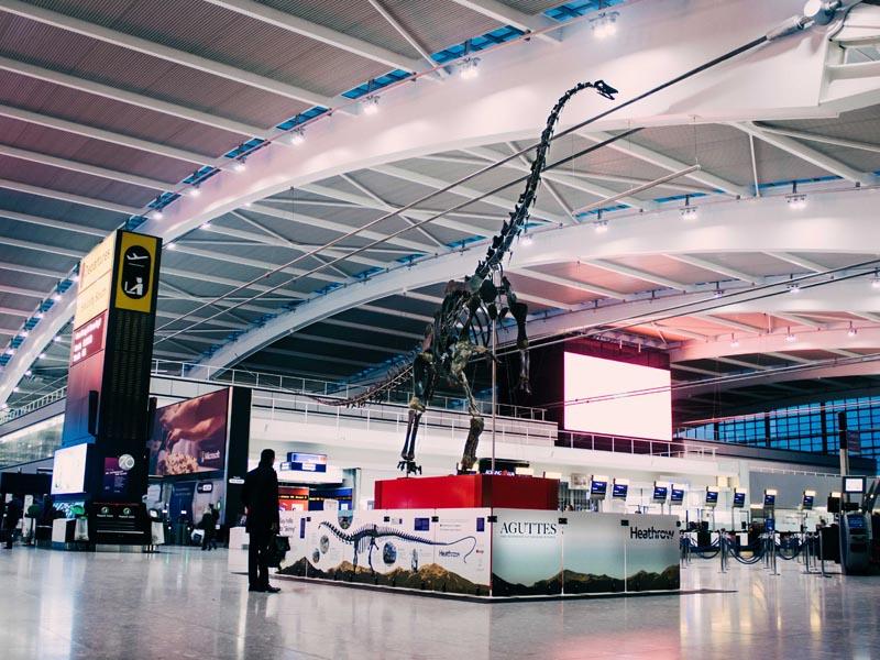 Skinny, squelette de dinosaure exposé à Heathrow Airport jusqu'au 3 juin 2019 ©Aguttes