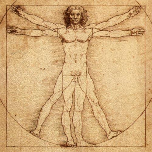 """""""L'homme de Vitruve"""", Leonard de Vinci"""