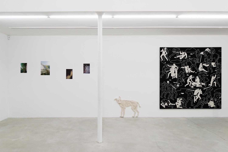 Vue d'exposition : Sean Vegezzi - Aline Bouvy - Cleon Peterson. Photographie : Aurélien Mole