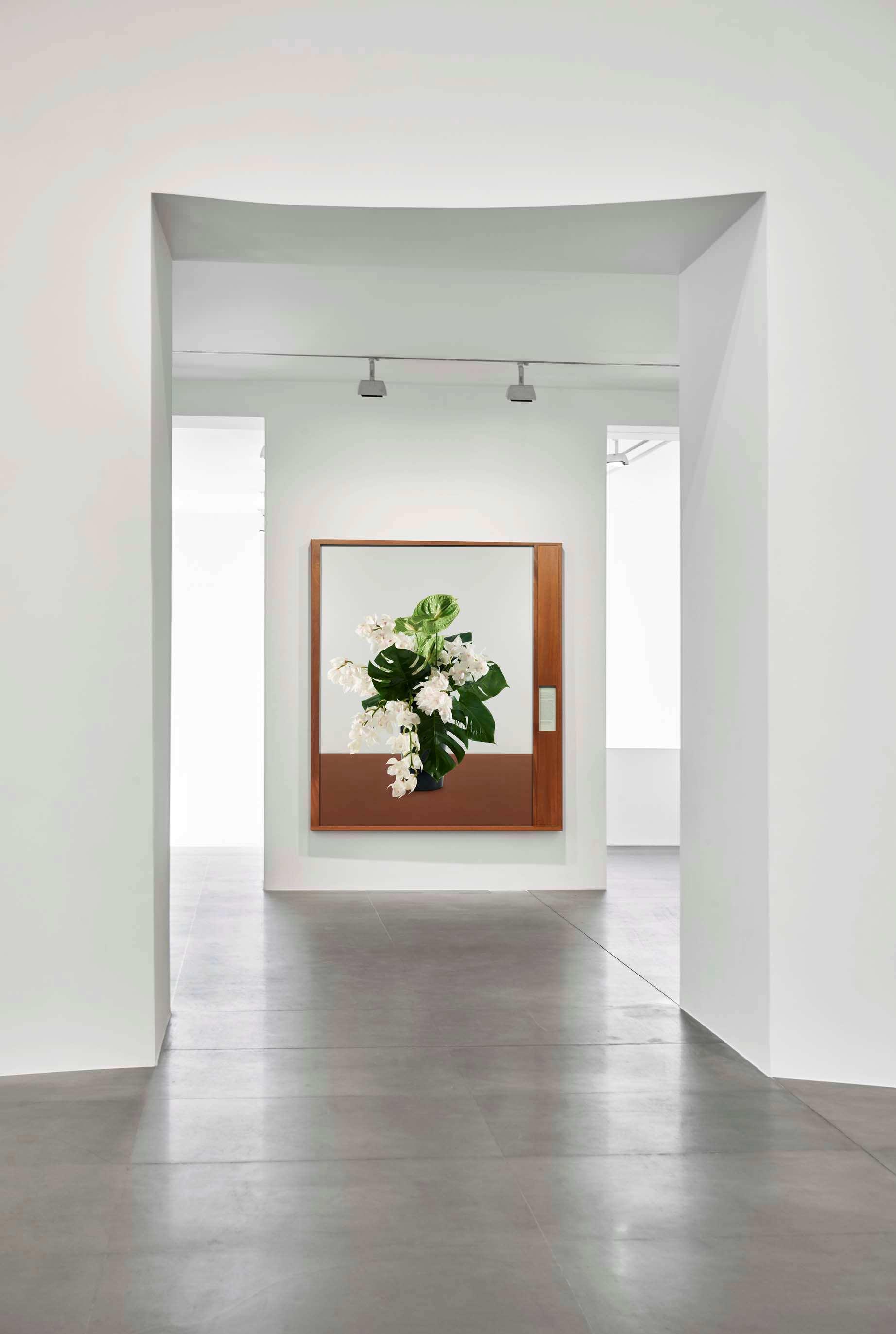 Cecily Brown Dore Ashton Lari Pittman Gagosian Gallery