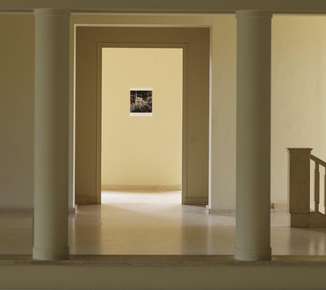Vue de l'exposition de Trisha Donnelly au musée Serralves de Porto.  L'œuvre présentée par Donnelly est de cet ordre, et les visiteurs qui s'engageaient dans la salle assombrie où elle était exposée ne ressortaient parfois qu'après plusieurs dizaines de minutes, certains demeurant une heure devant la projection d'une image qu'il était difficile de décrire au premier abord comme fixe ou animée. Complexe, cette image faite au trait blanc sur fond noir n'était pas figurative: un réseau sophistiqué de petits cercles, de traits et de surfaces semblant représenter quelque chose –mais quoi?– et semblant animé par la lumière de la projection. Certains y virent des formes qui évoquaientLeBaiser(1907-1908) de Gustav Klimt, d'autres acquirent la certitude qu'il s'agissait non pas d'une image fixe, mais d'une vidéo, repérant le mouvement à peine perceptible de certaines formes ou la variation de l'intensité lumineuse. Une image hypnotique, assurément envoûtante, dont on cherche inlassablement à percer les secrets parce qu'on n'en a jamais vu de telle et que ces secrets semblent justement à portée de compréhension, sans pour autant nous l'accorder.