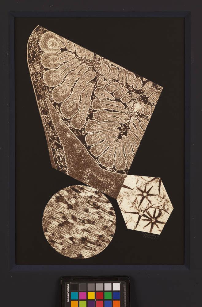 Heisenberg, 1938-1945*, collage de photographies sur carton, 45 x 30,7 cm. Collection particulière, en dépôt à la Fondation Vasarely, Aix-en-Provence, photo © Centre Pompidou / Philippe Migeat © Adagp, Paris, 2018