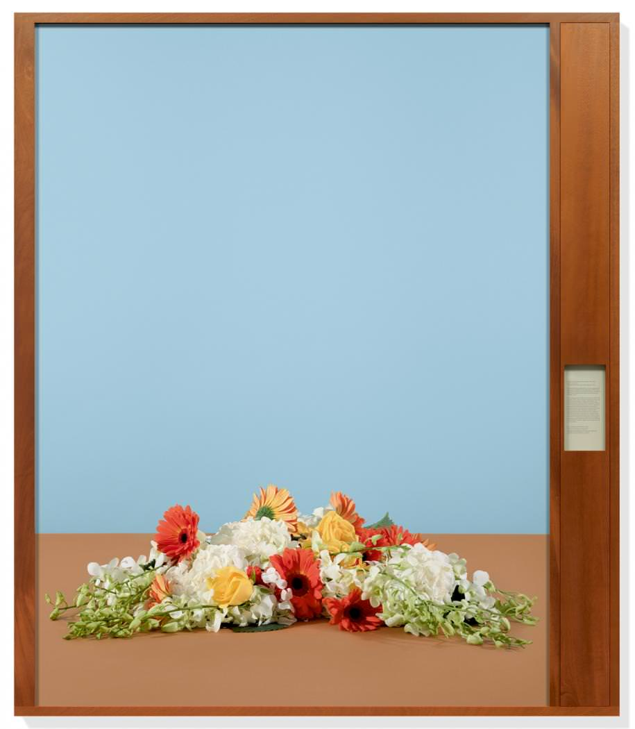 taryn simon u0027s political flowers at rome u0027s gagosian gallery