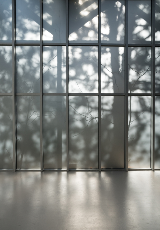 Vue de l'exposition Daniel Steegmann Mangrané,Ne voulais prendre ni forme, ni chair, ni matière, du 20 février au 28 avril 2019 à l'Institut d'art contemporain © Teresa Estrada Ferrando.