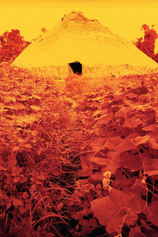 Maison collective entourée de feuilles de patate douce, pellicule infrarouge, Catrimani, Roraima, 1976.