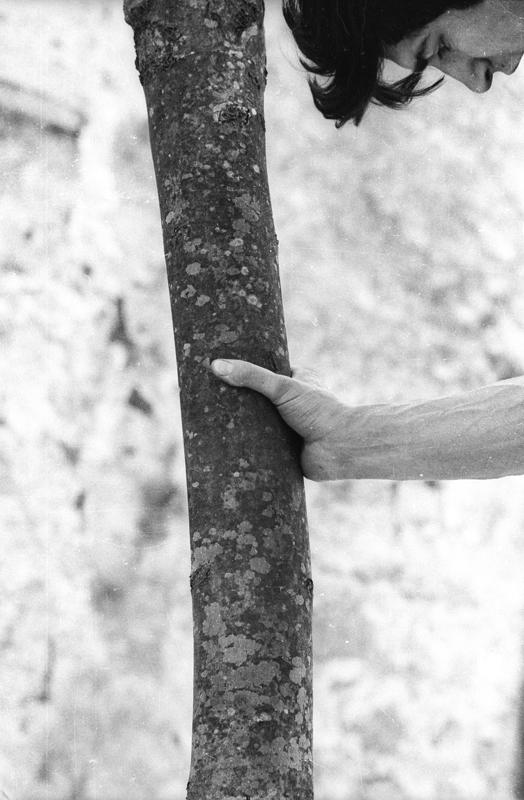 "Giuseppe Penone, ""Alpi Marittime. Continuerà a crescere tranne che in quel punto (Alpes Maritimes. Il poursuivra sa croissance sauf en ce point)"" (1968)."
