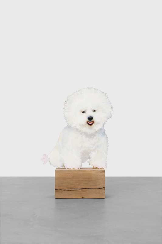 """Happy bichon"", Ida Tursic & Wilfried Mille, 2018. Courtesy Almine Rech gallery."