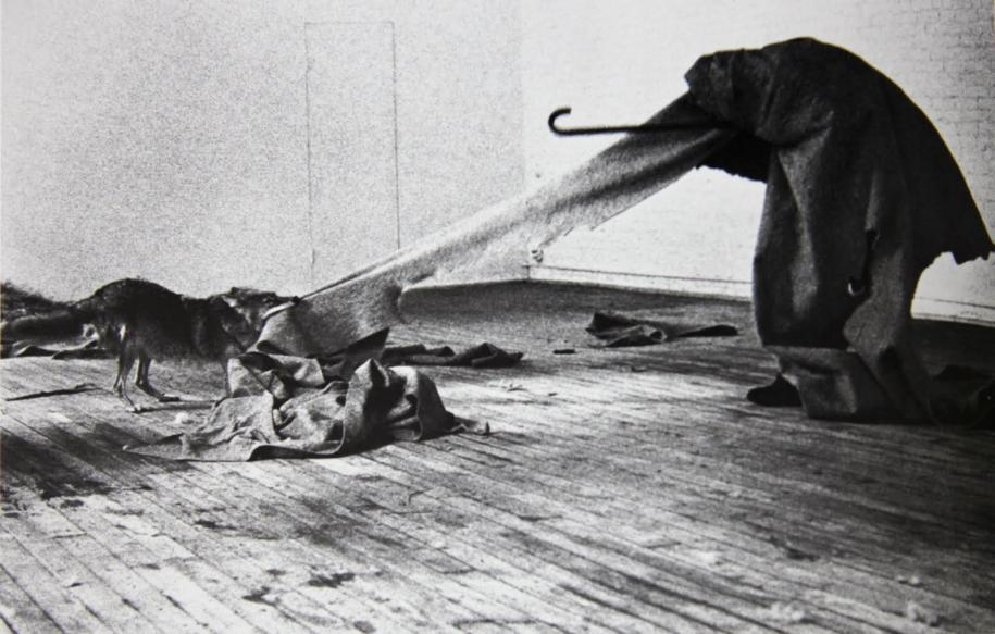 "La performance ""I like America and America likes me"" réalisée par Joseph Beuys en 1974."