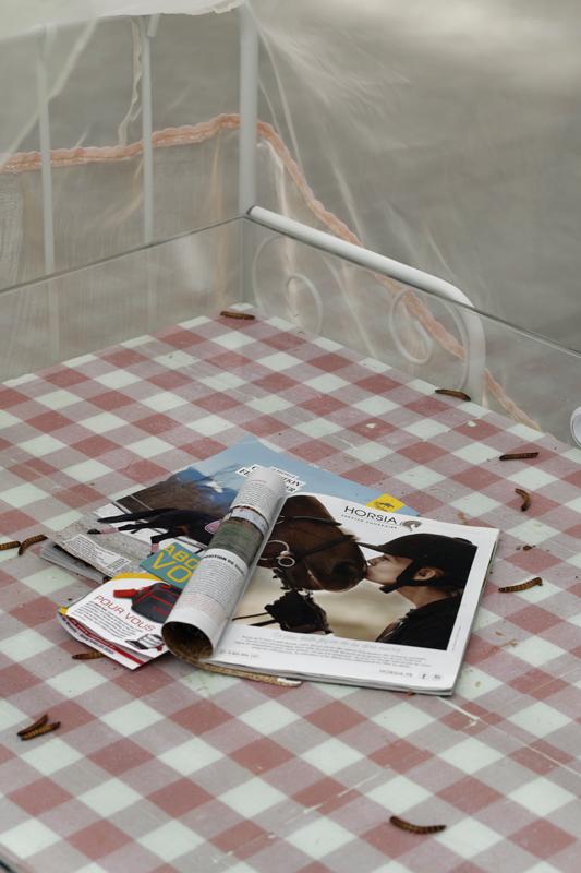 """Aude Pariset, """"Promession®: Rêve de Chrysalide, Puberté Florissante"""" (2018). Vue de l'exposition """"Futur, ancien, fugitif"""", Palais de Tokyo (16.10.19 – 05.01.20). Courtesy de l'artiste & Sandy Brown (Berlin). Crédit photo : Aurélien Mole"""