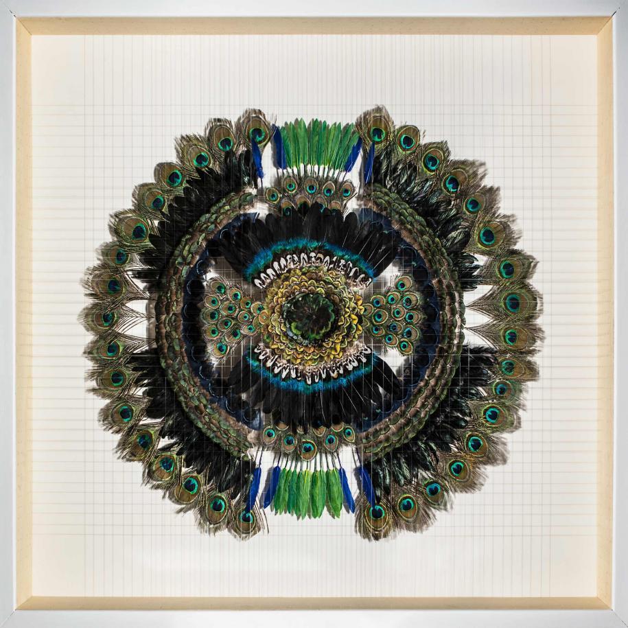 Mandala (2016) de Pauline Guerrier, plume, Nylon et bois, 120 x 130 cm.