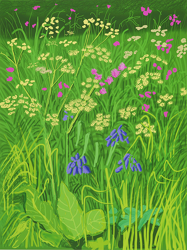 """Annely Juda Fine Art :David Hockney, """"The Arrival of Spring in Woldgate, East Yorkshire in 2011 (twenty eleven)"""" (17 May,2011).Art Basel Hong Kong Online Viewing Room"""
