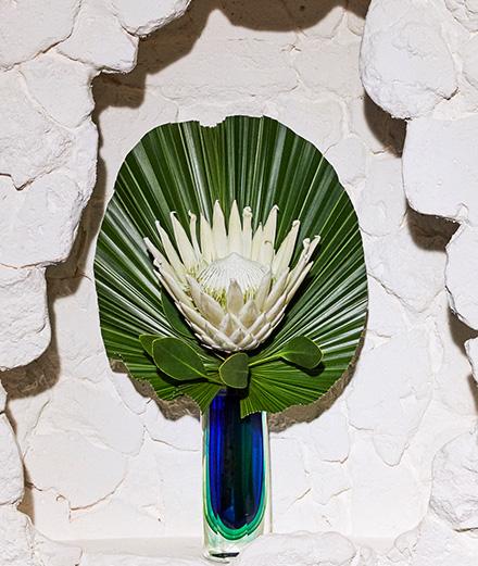 Les plus belles fleurs exotiques sont chez Arturo Arita