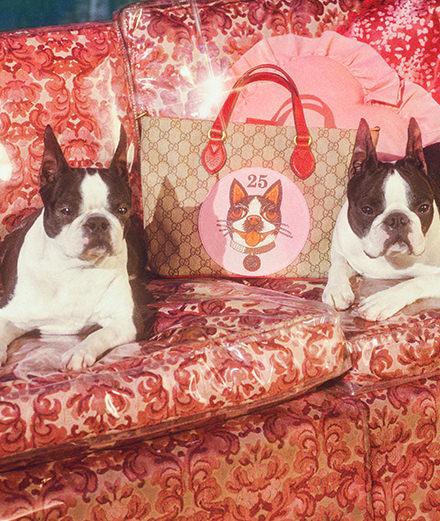 Gucci dévoile une collection inédite pour célébrer l'année du Chien