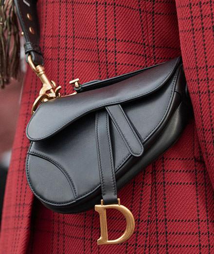L'objet du jour : le Saddle de Dior