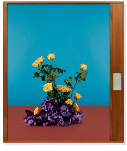 Taryn Simon's political flowers at Rome's Gagosian Gallery
