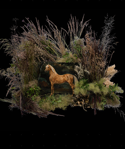 """Avec l'exposition """"Epiphyte"""", Artcurial invite des fleuristes à réinterpréter des œuvres d'art"""